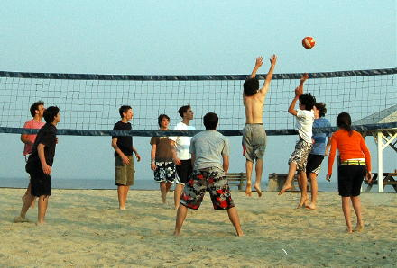 compovolleyball04210502.jpg