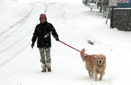 Sheila Bergmann and her dog Lucy in Westport, CT
