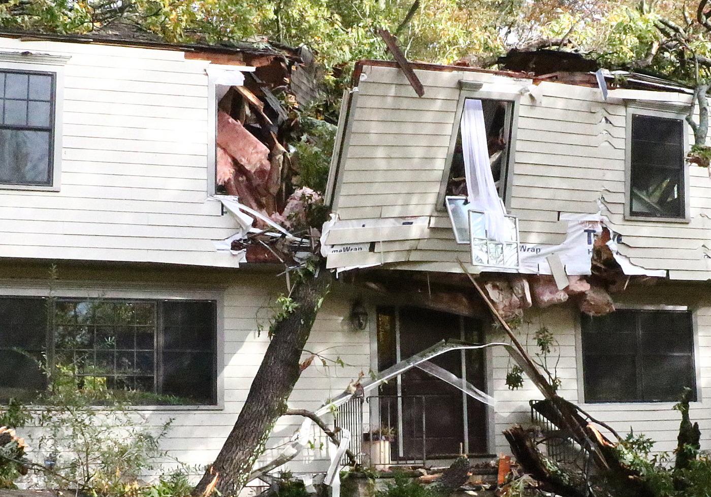 Tree Damage | WestportNow.com, Westport, CT