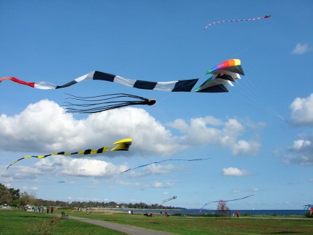 Kite Flying at Sherwood Island State Park, Westport, CT