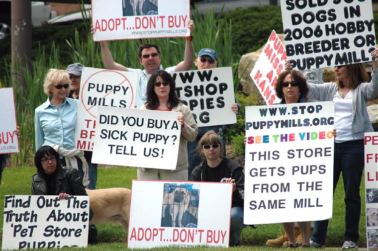 Puppy mill protest